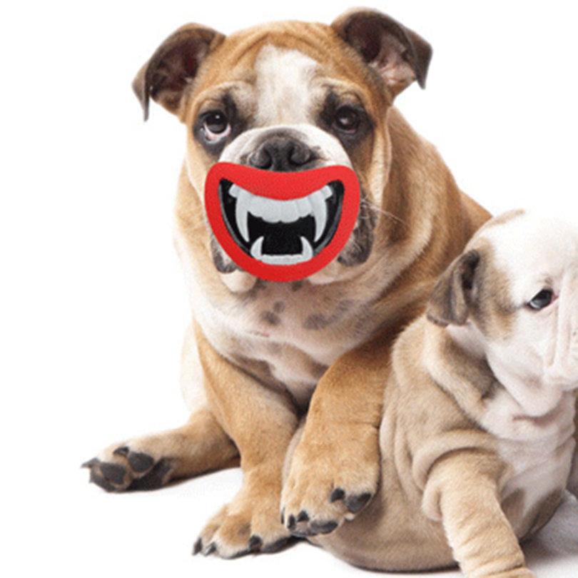 New-Dog-Toys-Funny-Squeak-Devil-039-s-Lip-Pig-Nose-Sound-Dog-Playing-Chewing-Toys-WS