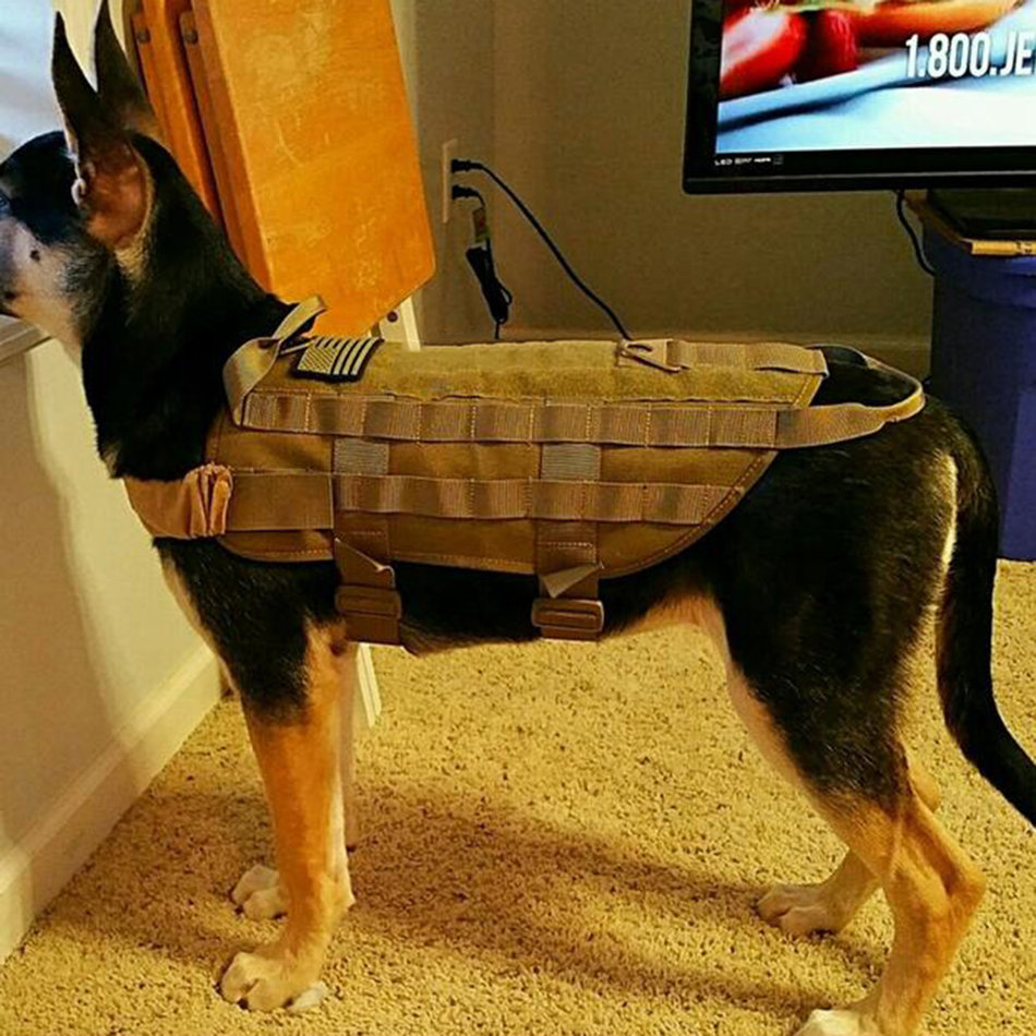Tactical Outdoor Military Dog Clothes Load Bearing