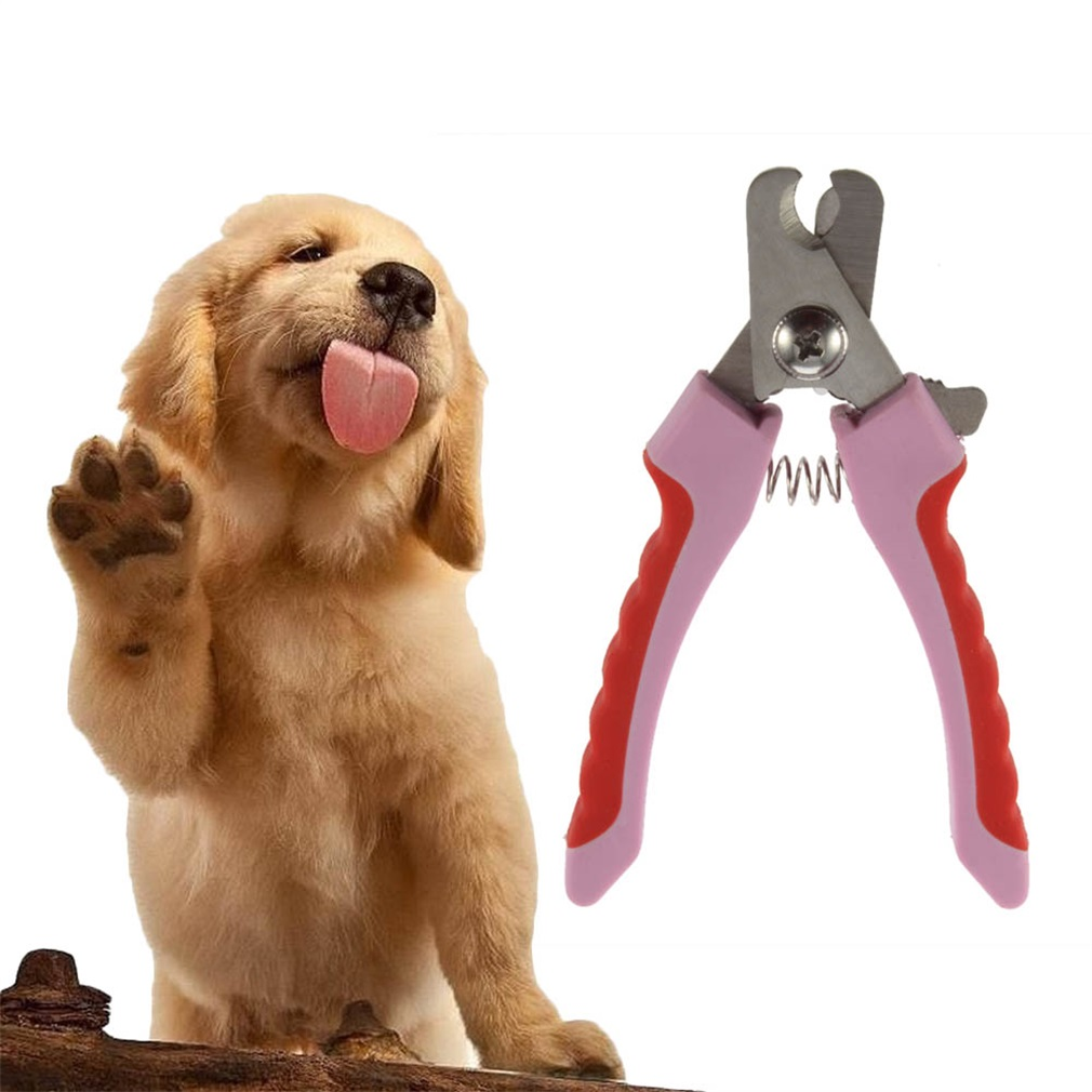 Dog Nail Clippers Best Friends