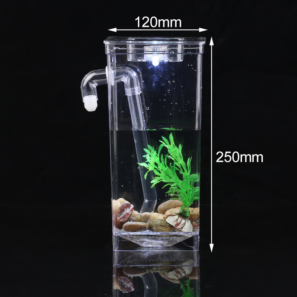 Fish tank aquarium self cleaning building cleaning for Cleaning fish bowl